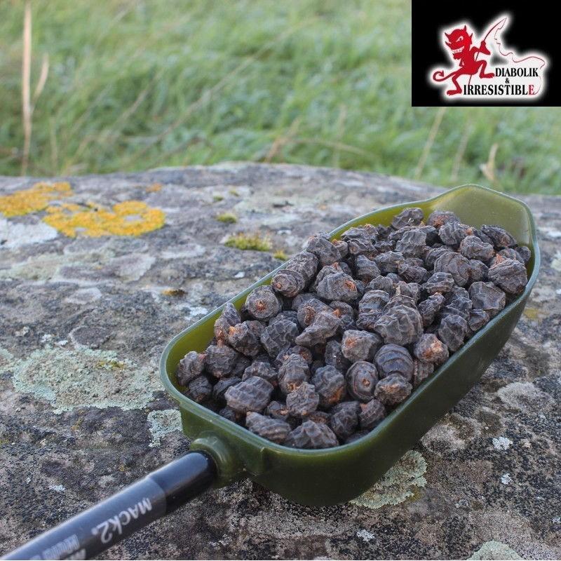 Black Tigernuts XXL