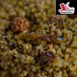 Birdfood insects