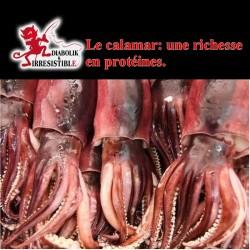 Farine de calamars 25kg