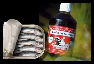 Huile de sardines